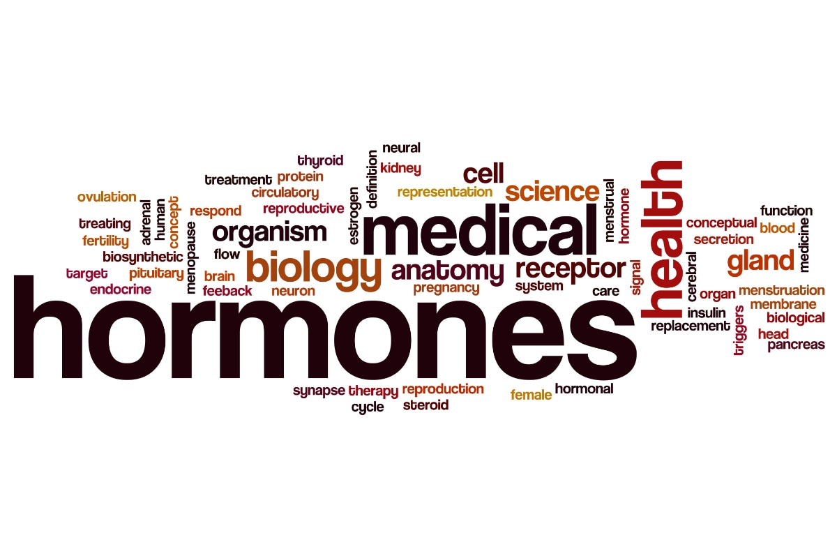 Hormóny štítnej žľazy, nadobličky, inzulín a pohlavné hormóny - všetko, čo potrebujete vedieť